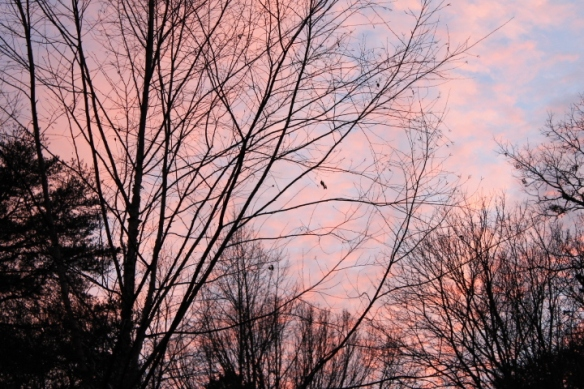 A delicate pink sunset after a day of  downpours