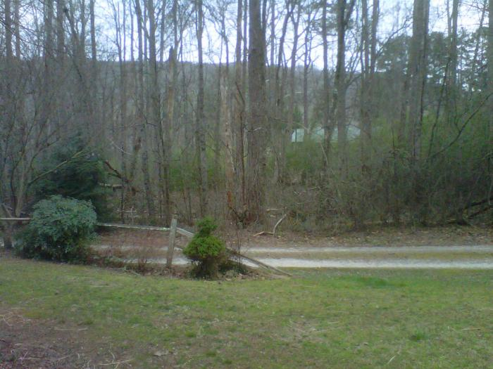Looking directly across our road, one can see the roof of our neighbor's house and nearby Yonah Mountain.