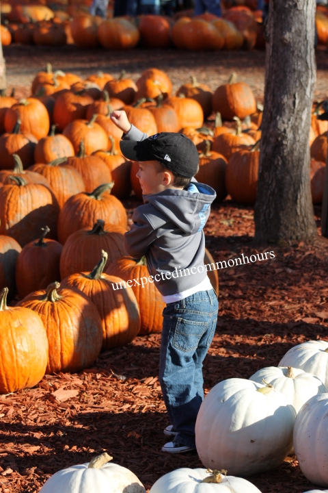 October orange
