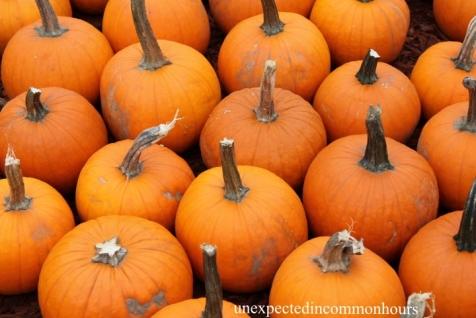 pumpkins #5