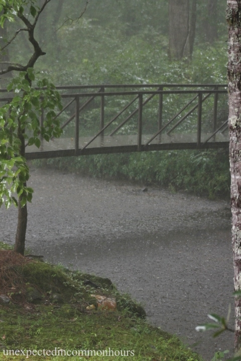 Rain on Town Creek