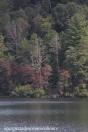 Unicoi Lake #3