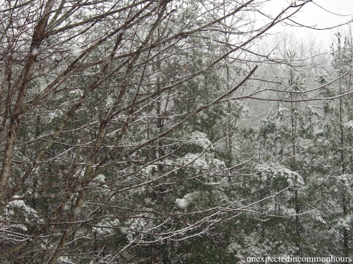 Intricate snow