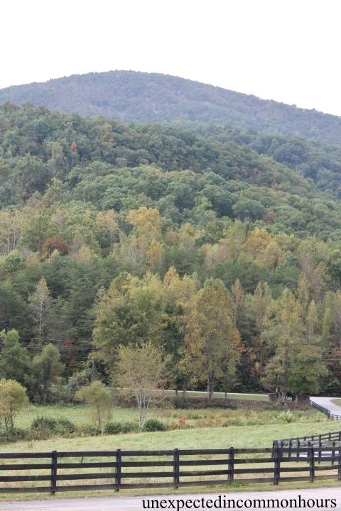 Layers of Yonah Mountain
