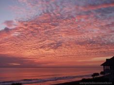 Ormond Beach #2