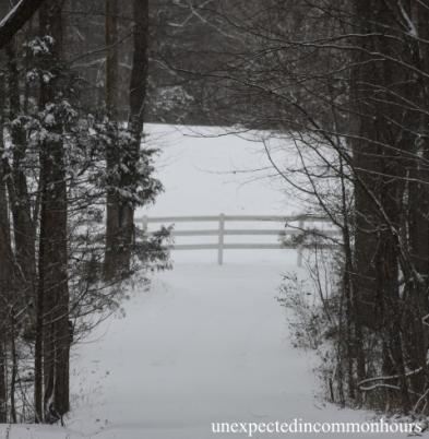 Whistlestop Trail