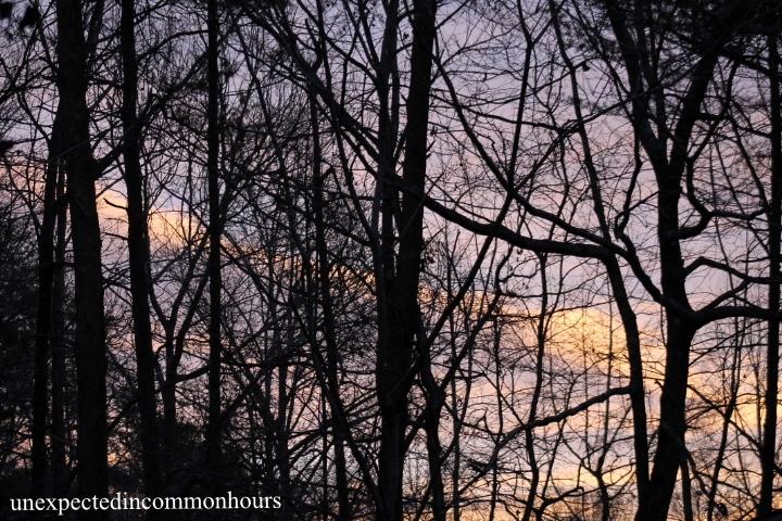 winter sunrise, #2