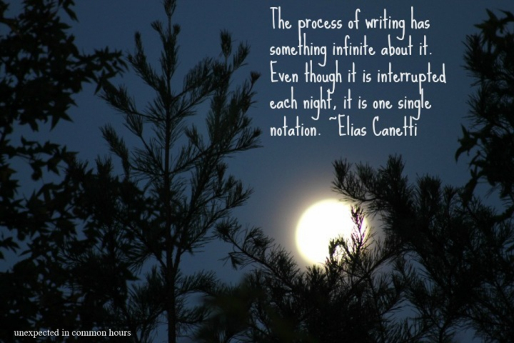Elias Canetti quote (2)