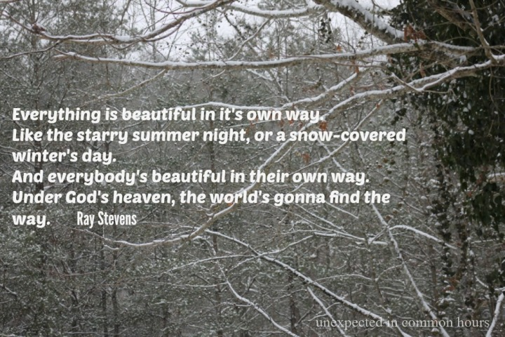 Ray Stevens quote