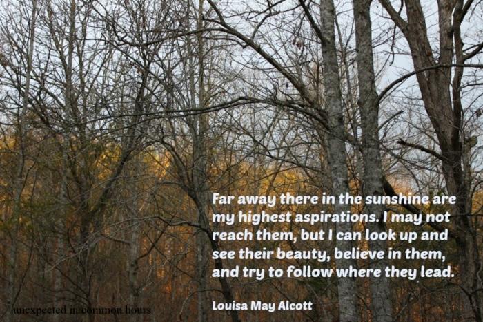 Alcott quote