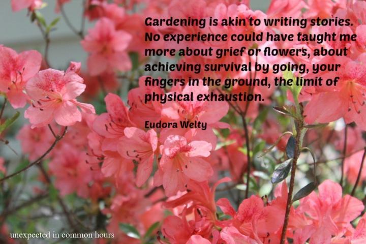 Eudora Welty on gardening