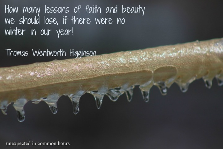 Higginson winter quote