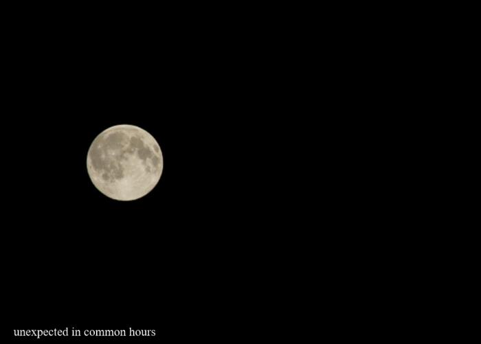 Blue moon-2