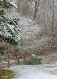 March snow 1