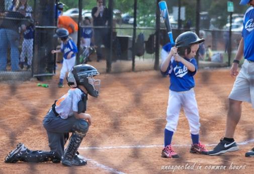 Hind catcher 4