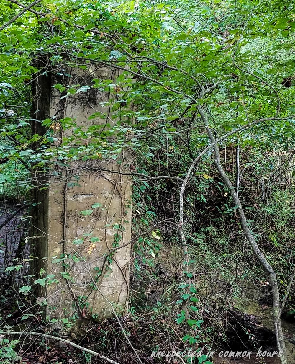 abandoned-railway-trestle