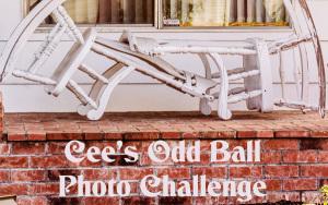 Odd ball photo challenge