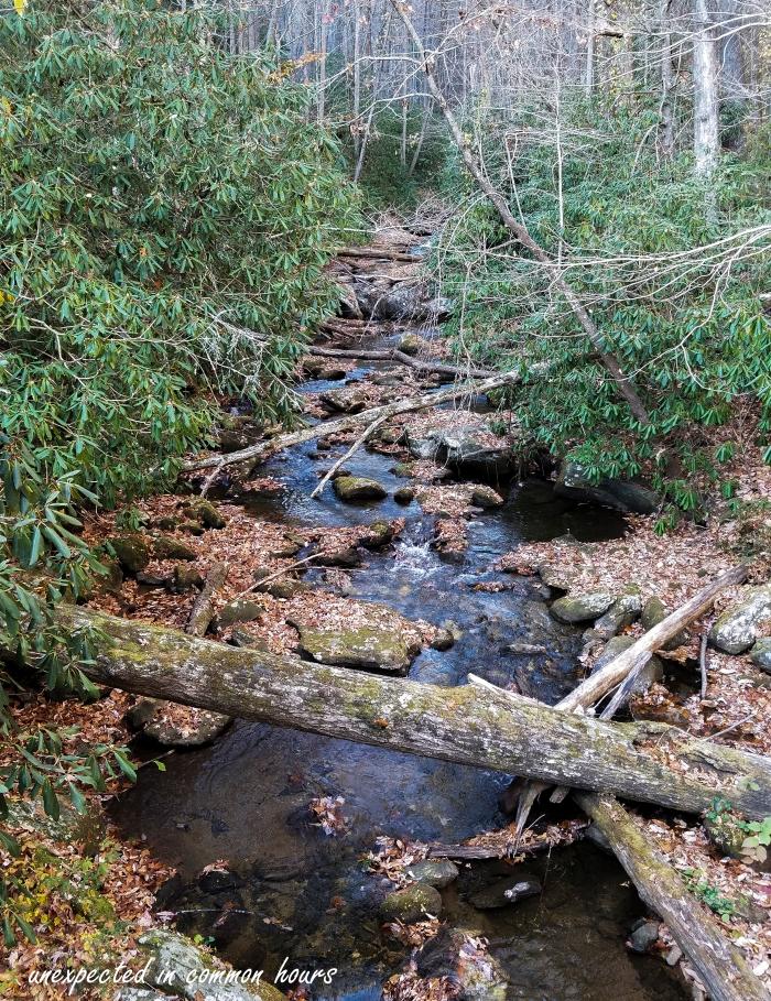 smith-creek-2