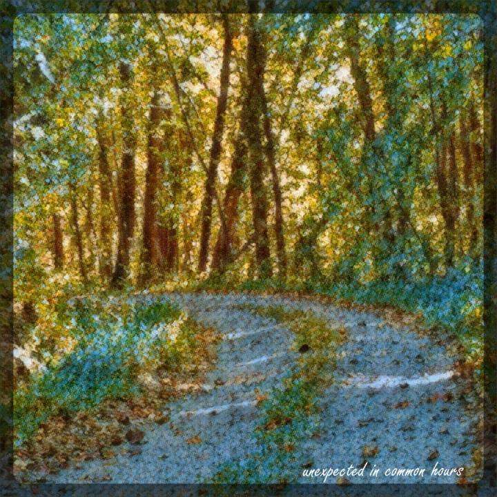 whistlestop-trail