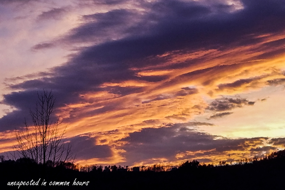 Walmart sunset 2