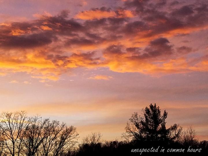 Walmart sunset 3