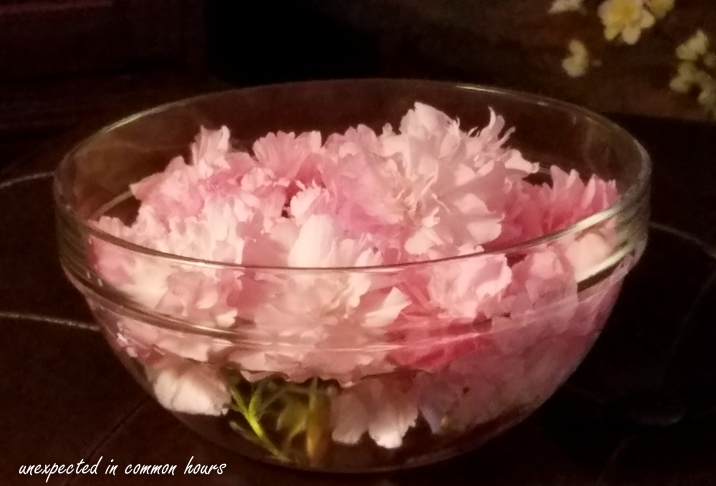 Cherry blossoms in bowl 2