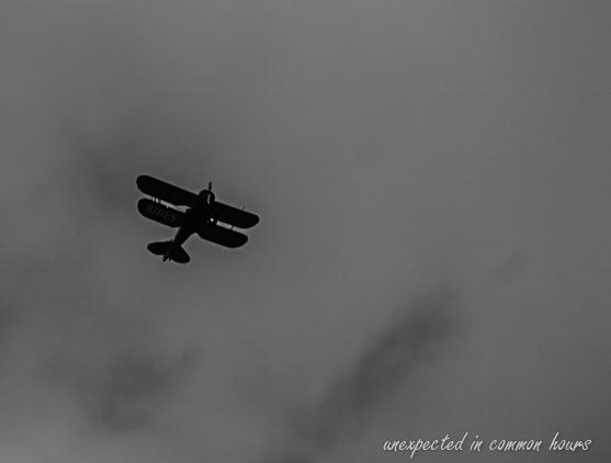 Bi-plane-1