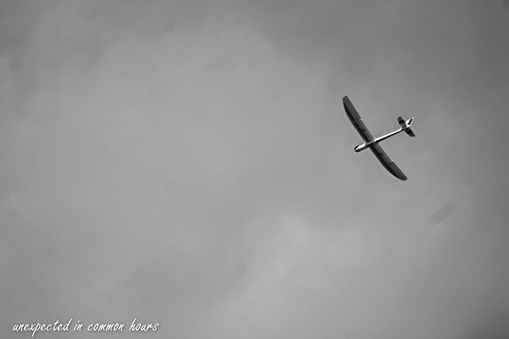 Glider-1