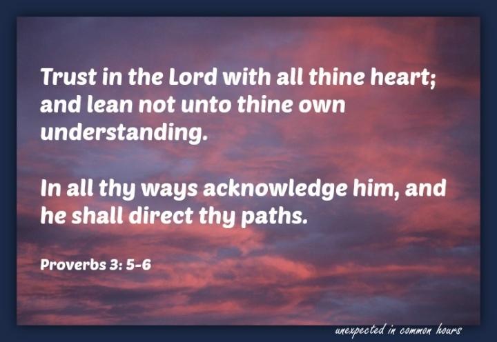 Proverbs 3 5-6 (2)