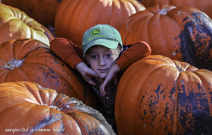 Lost in thought among the pumpkins