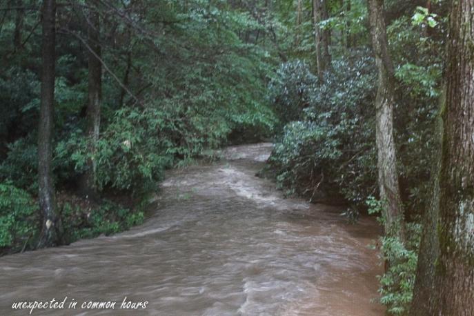 Rain on Town Creek5