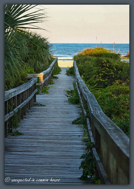 Relaxing boardwalk view