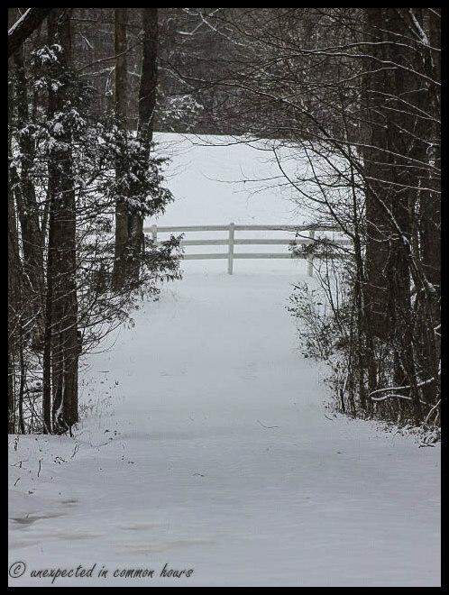 Soft snow 2