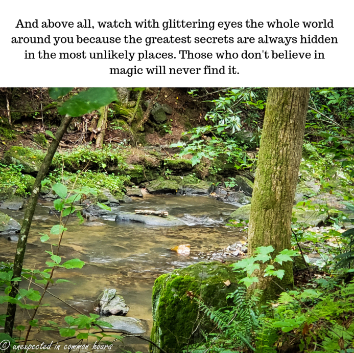 and-above-all-watch-with-glittering-eyes-the-whole-world-around-you-because-the-greatest-secrets-are-always-hidden-in-the-most-unlikely-places-those-who-dont-believe-in-magic-will-nev1-e1536795154713.png