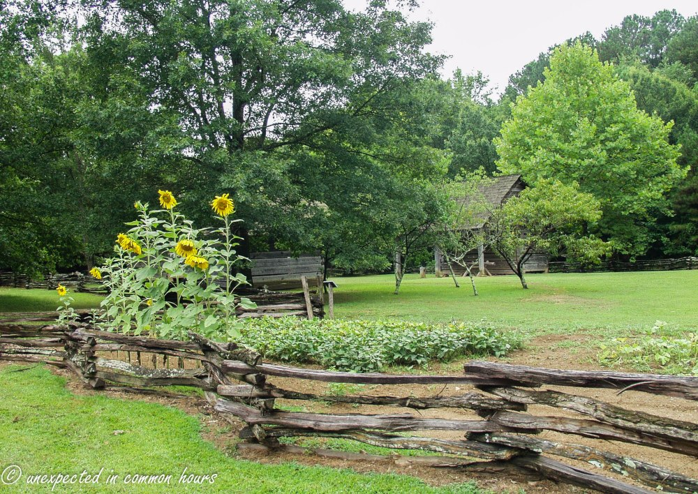 Fence at New Echota