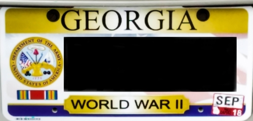 License plate 1