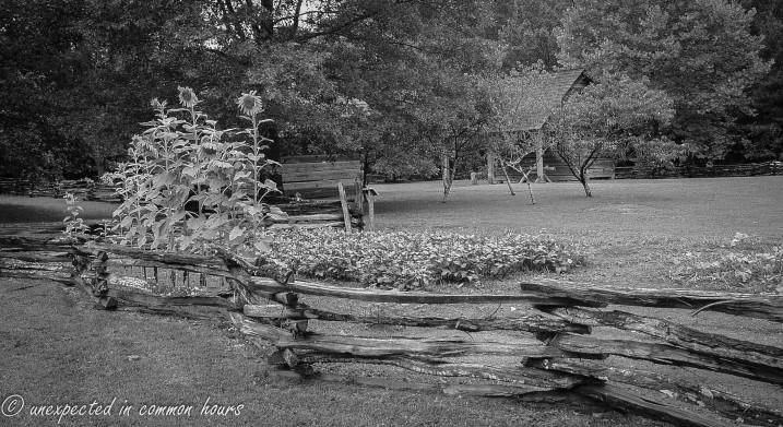 Fence at Cherokee Farm, New Echota Historic SIte