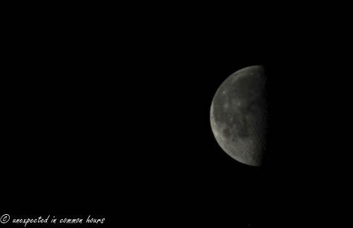 Half moon 2